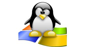 tux windows logo